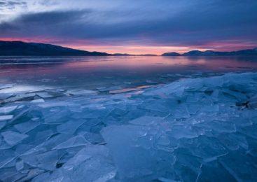 Tanak led