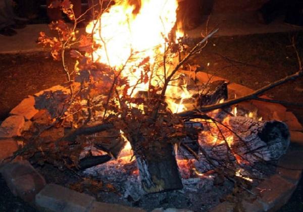 Drvo badnjak i pučki običaji