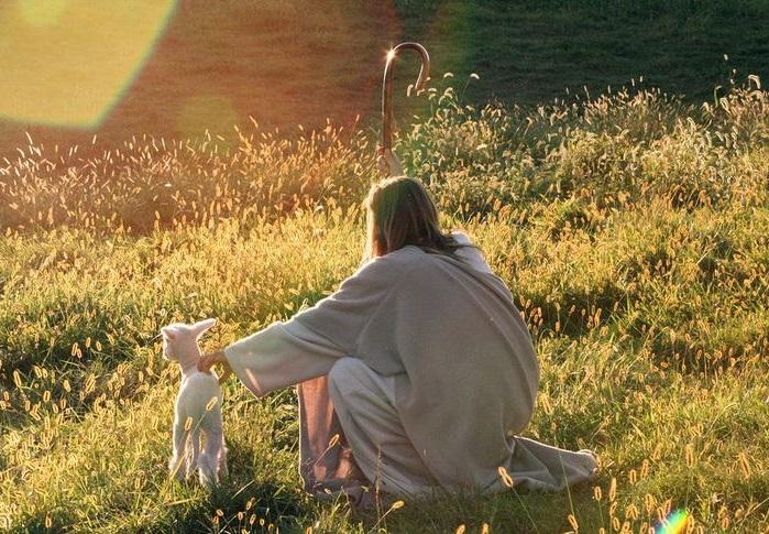 4. vazmena nedjelja (B) – komentar evanđelja
