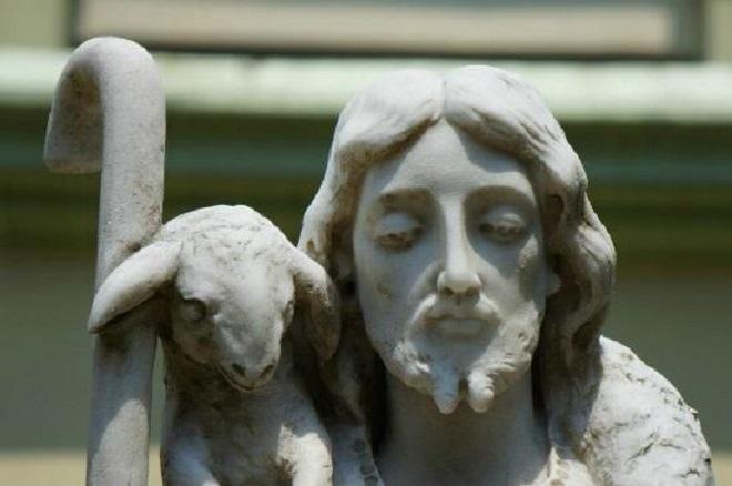 Dati život za ovce – razmišljanje uz 4. vazmenu nedjelju (B)