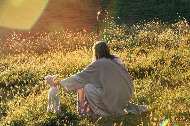 Meditacija uz 4. vazmenu nedjelju (B)