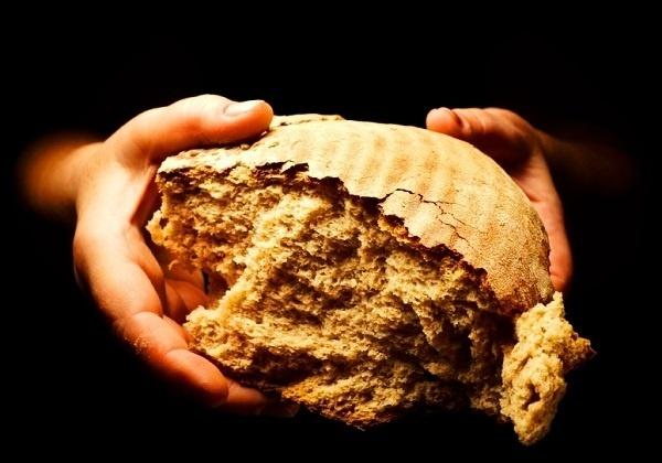 Cjeloviti kruh