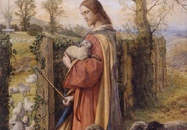 Preskakati ogradu ovčinjaka? – razmišljanje uz 4. vazmenu nedjelju (A)