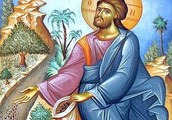 15. nedjelja kroz godinu (A) – komentar evanđelja