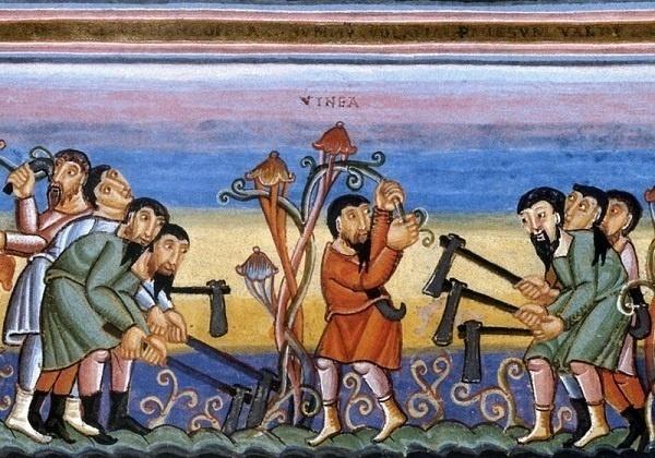 27. nedjelja kroz godinu (A) – nacrt za homiliju