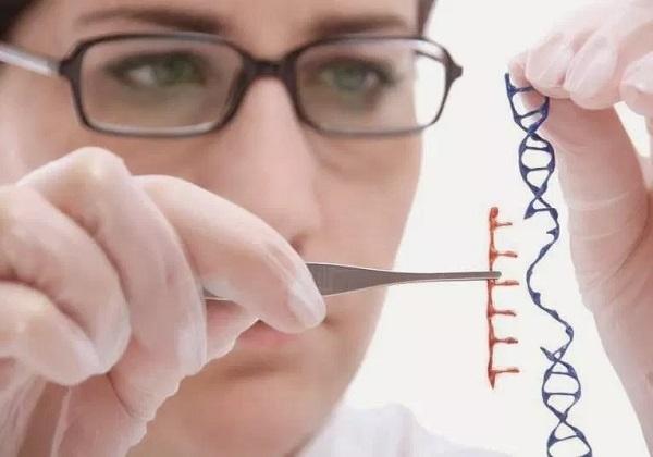 Genetički inženjering i transplantacija u svjetlu učenja Katoličke Crkve
