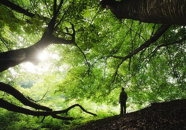 Ekološki ispit savjesti za osobnu ispovijed