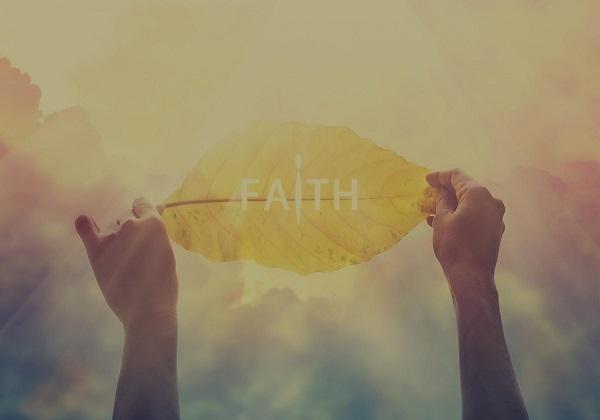 29. nedjelja kroz godinu (C): Vjera na zemlji