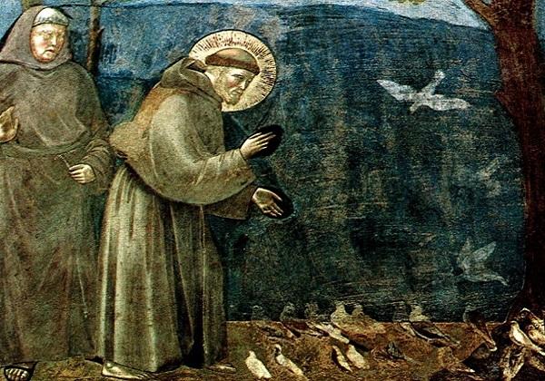 Briga za okoliš u svjetlu učenja Katoličke Crkve